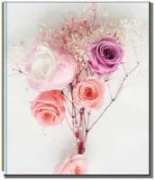 Фотоальбом 10x15/200 BKM46200 Bouquet rose
